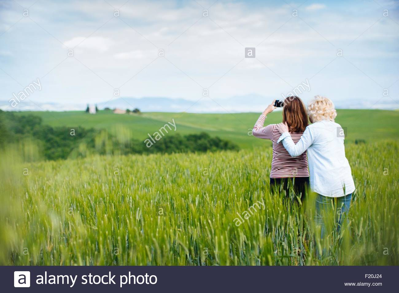 Two mature female friends photographing from wheatfield, Tuscany, Italy - Stock Image