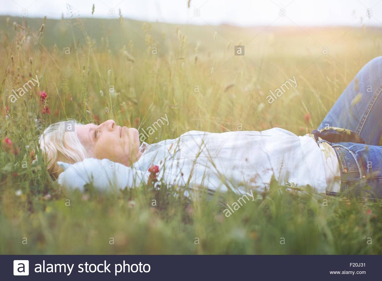 Mature woman reclining in long grass, Tuscany, Italy - Stock Image