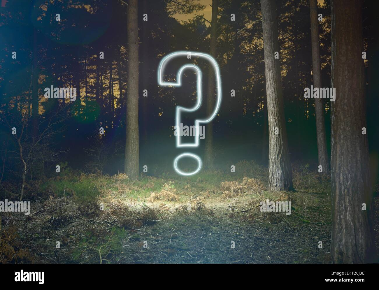 Glowing question mark symbol in forest at night - Stock Image