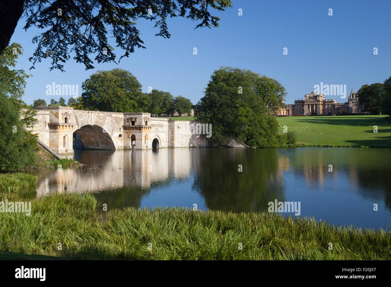 Blenheim Palace and parkland, Woodstock, Oxfordshire, England, United Kingdom, Europe - Stock Image
