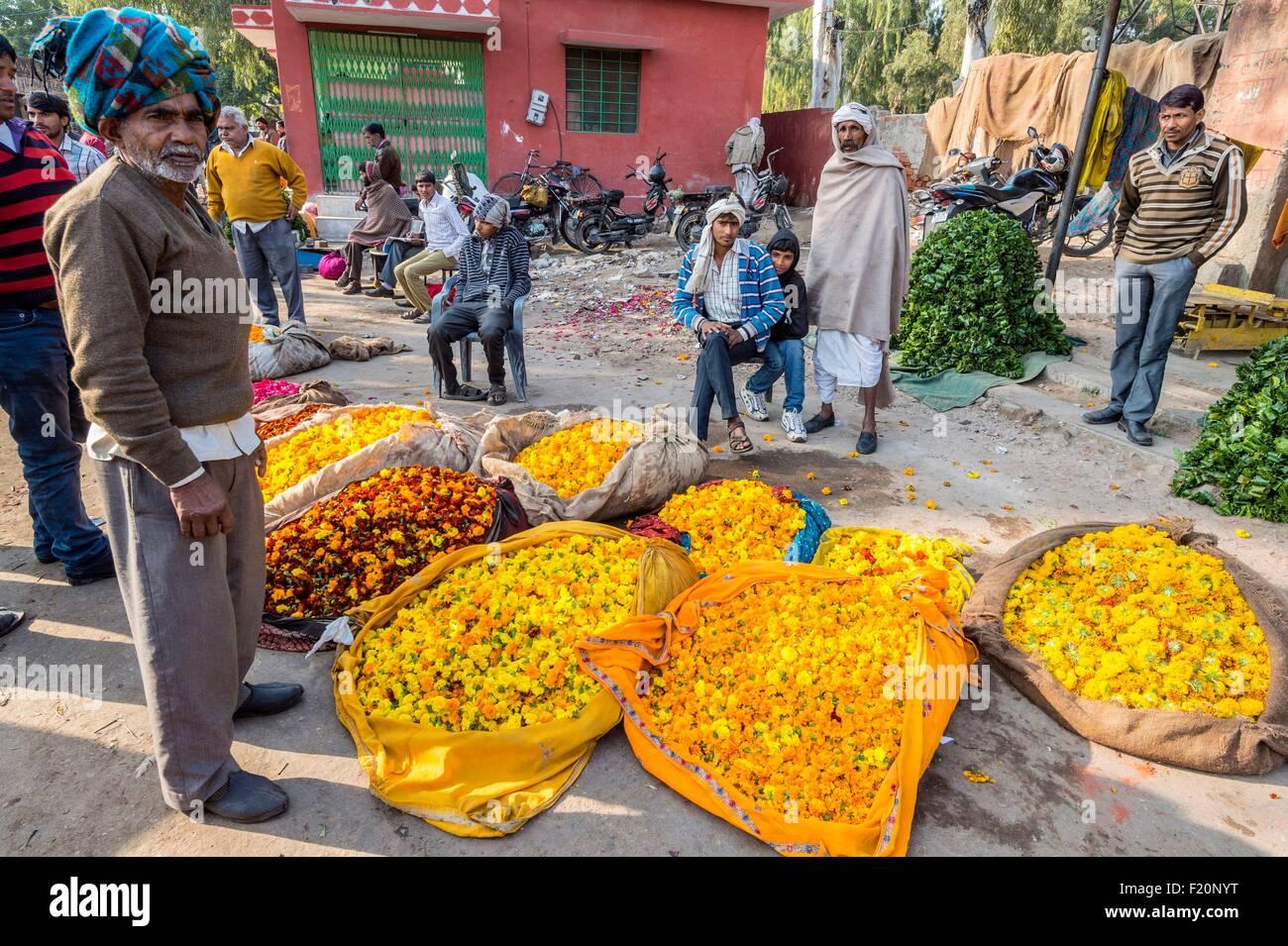 India, Rajasthan state, Jaipur, Chandi Ki Taksal flower market Stock Photo