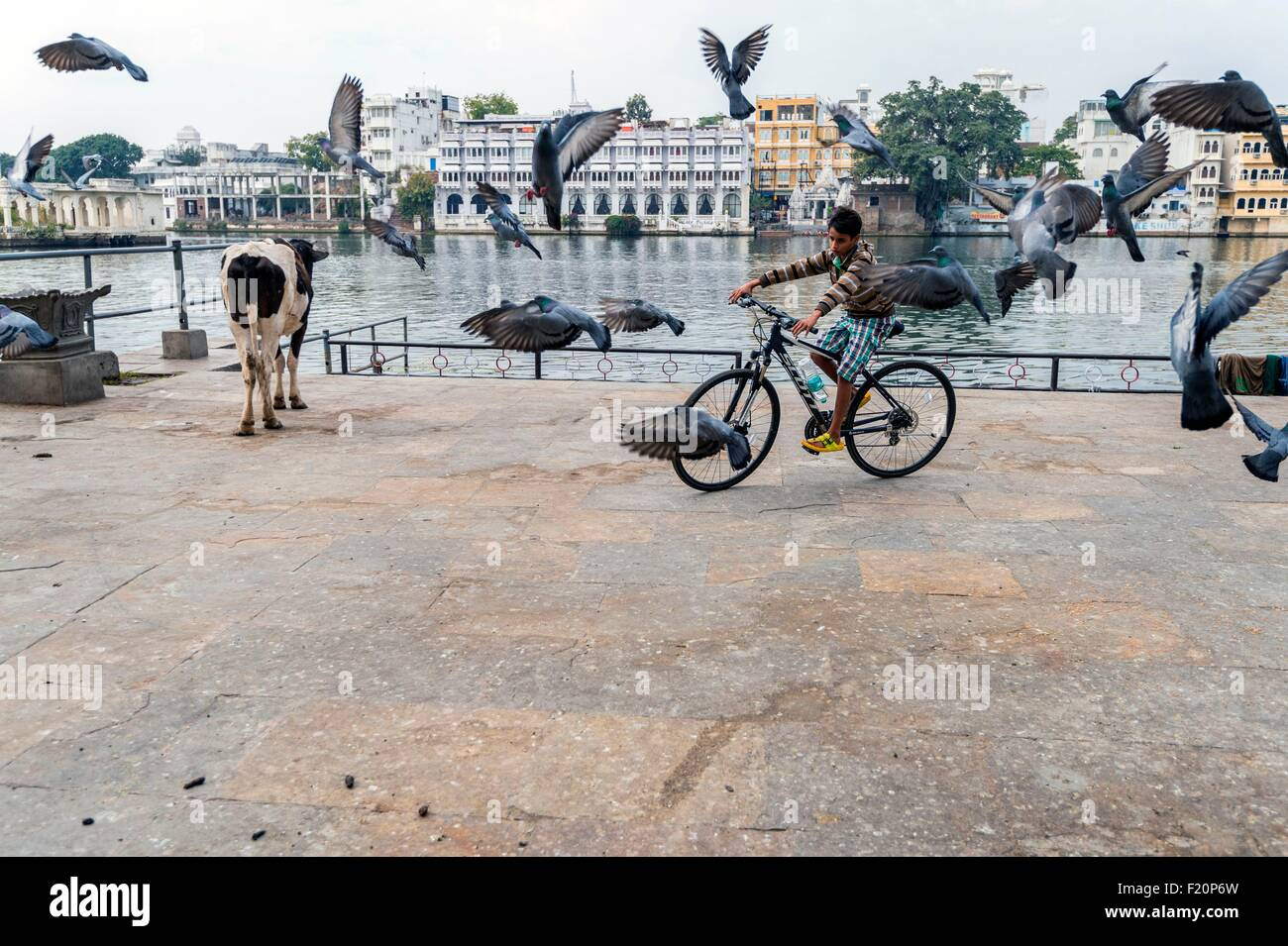 India, Rajasthan state, Udaipur, the ghats of Lake Pichola - Stock Image