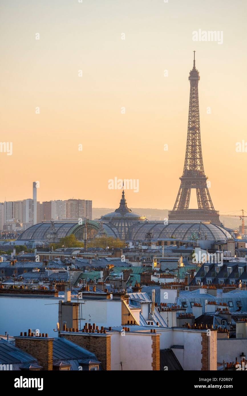 France, Paris, the glass roof of the Grand Palais and the Eiffel Tower - Stock Image