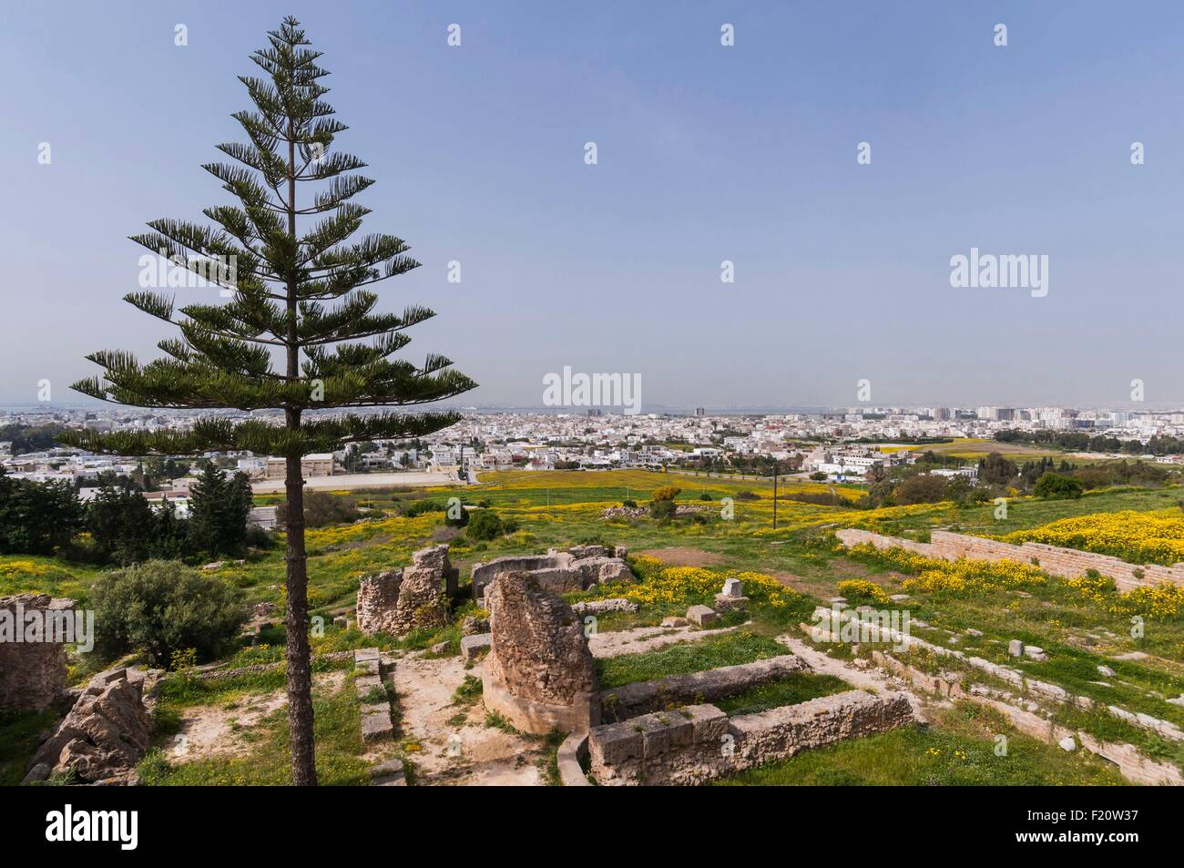 Tunisia, Gorvenorate of Tunis, Carthage, archeologic site of Punic city, listed as World Heritage by UNESCO - Stock Image
