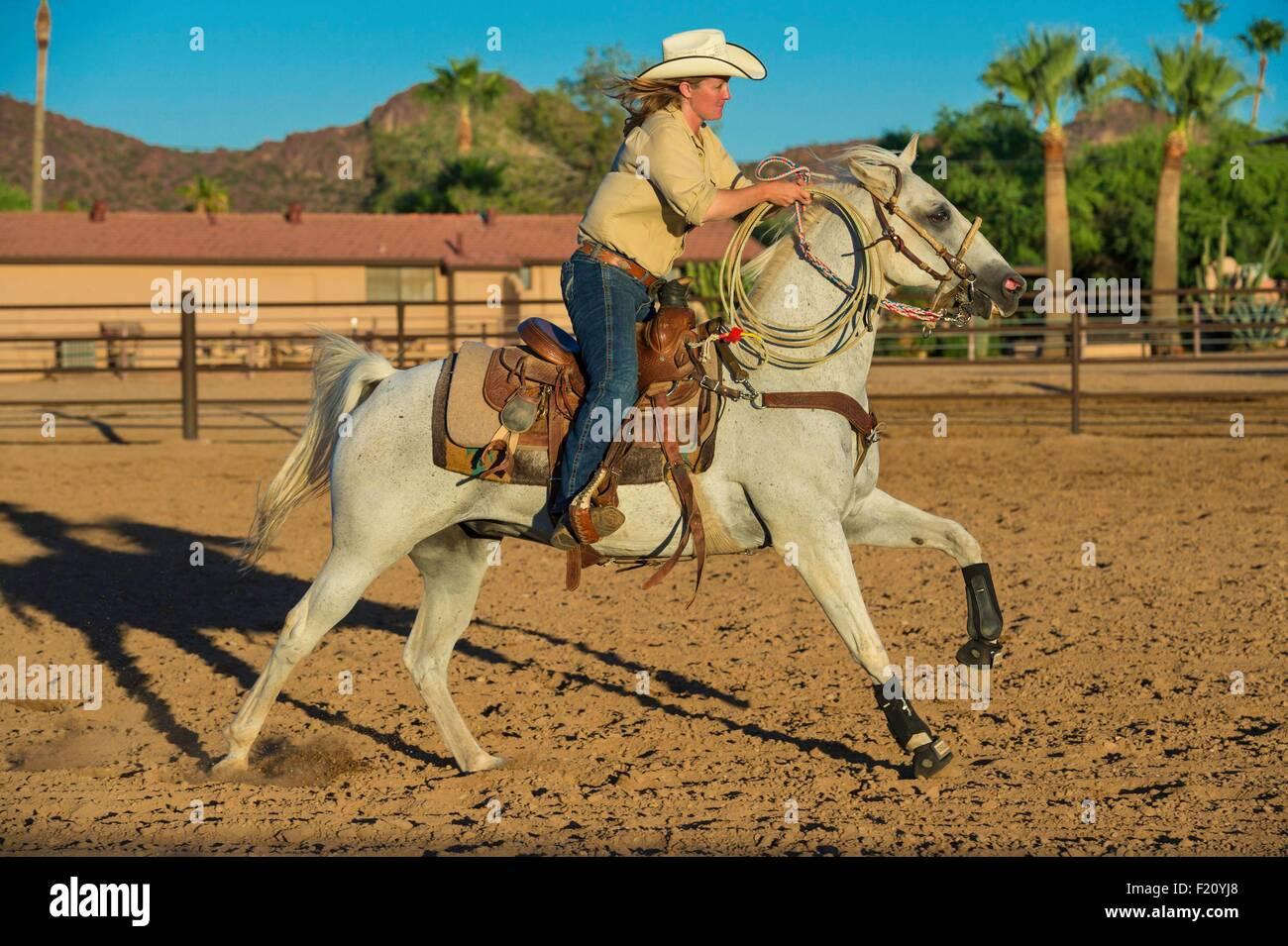 United States, Arizona, Tucson, White Stallion Ranch - Stock Image