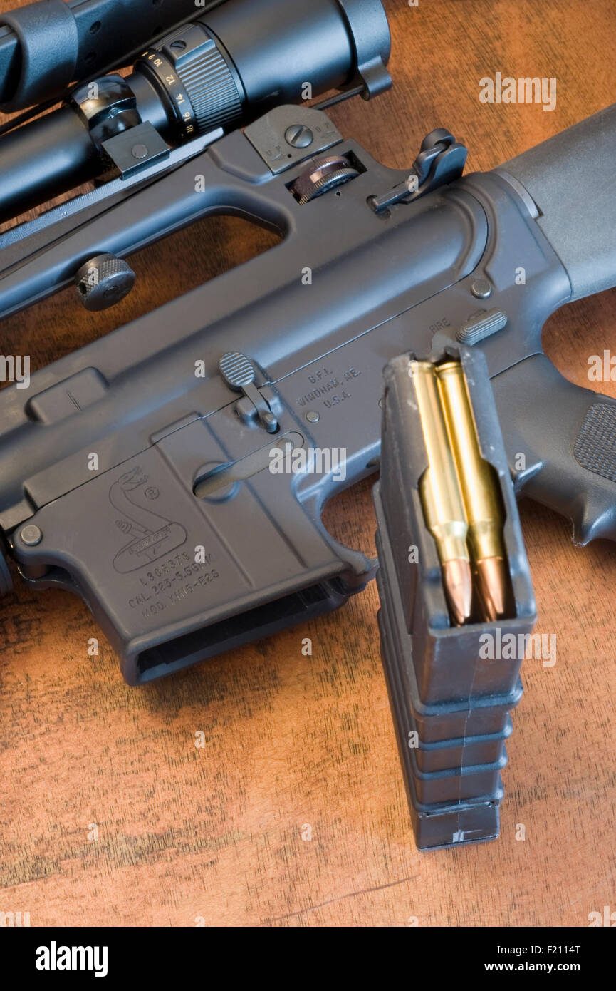 Bushmaster AR-15 assault rifle with 30 round 5 56mm magazine