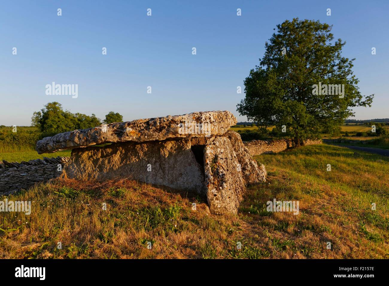 France, Vienne, Exoudun, Dolmen of Sept Chemins - Stock Image