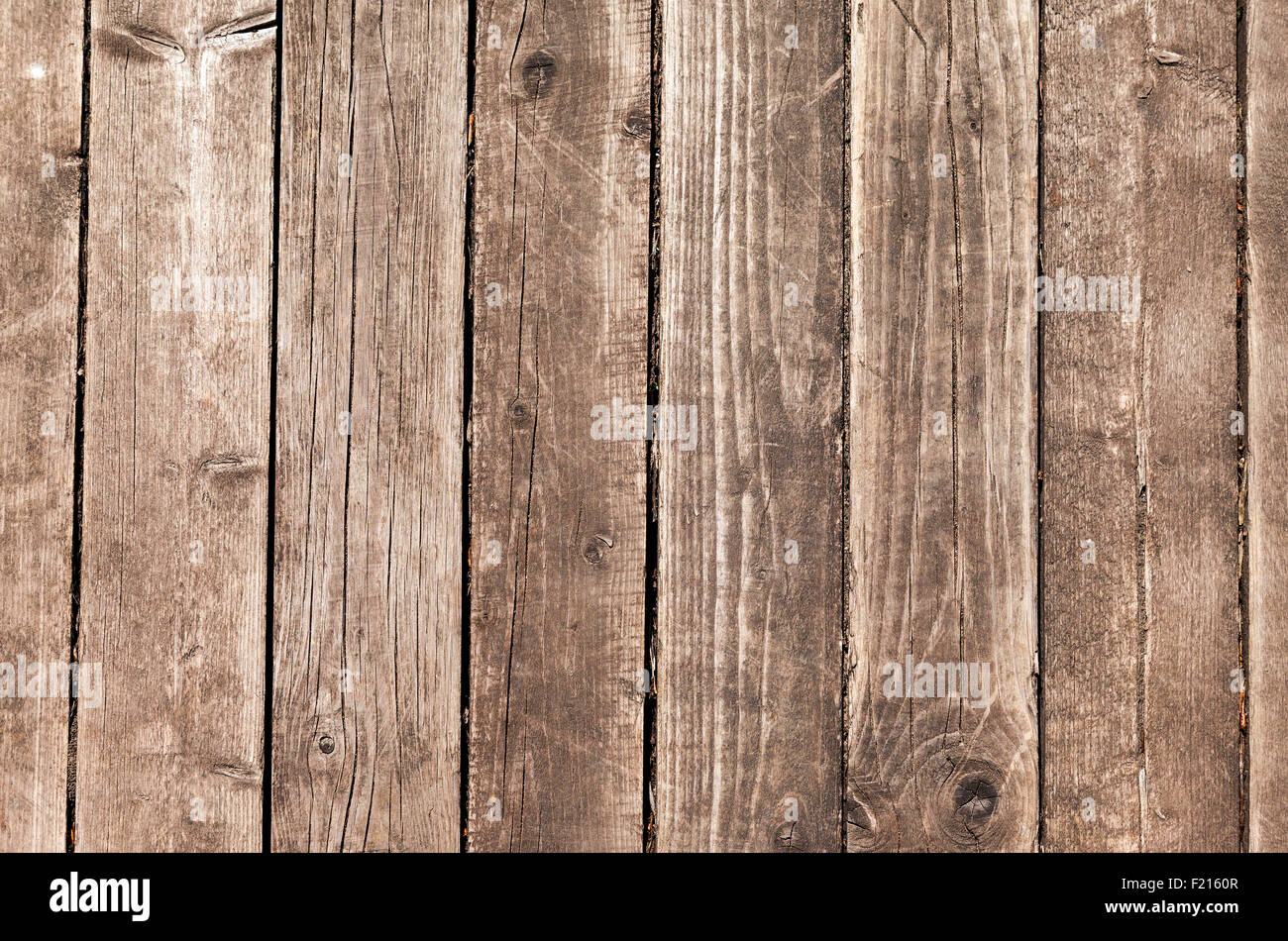 Gray wood texture with natural patterns - Stock Image