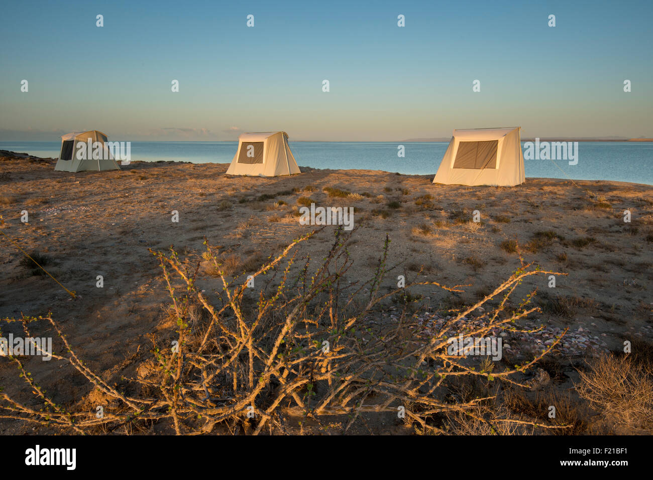 Mexico. San Ignacio Lagoon. Sunrising on tourists. - Stock Image