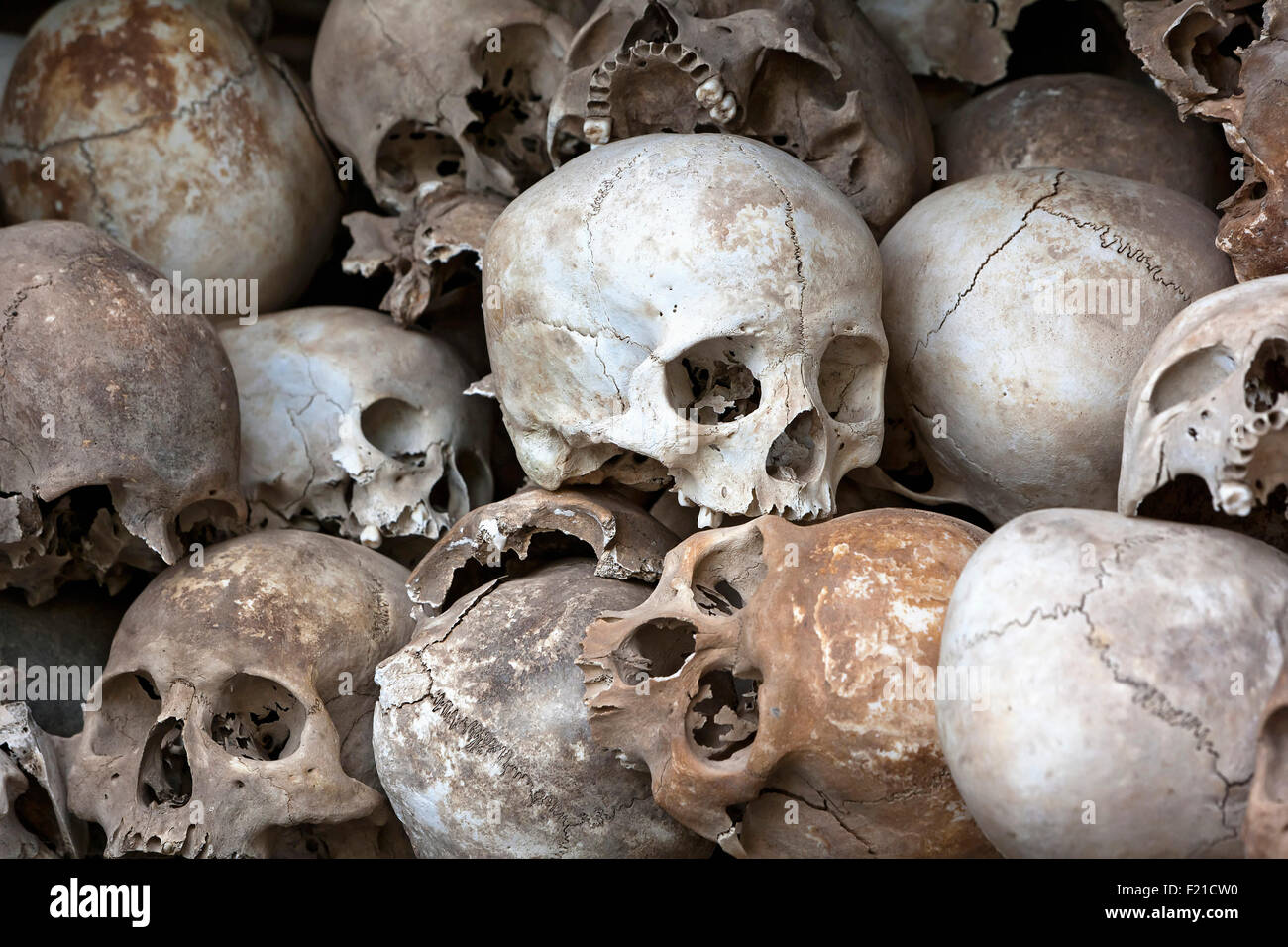 Skulls at the Choeung Ek Memorial stupa for victims of the killing fields of the Khmer Rouge - Stock Image