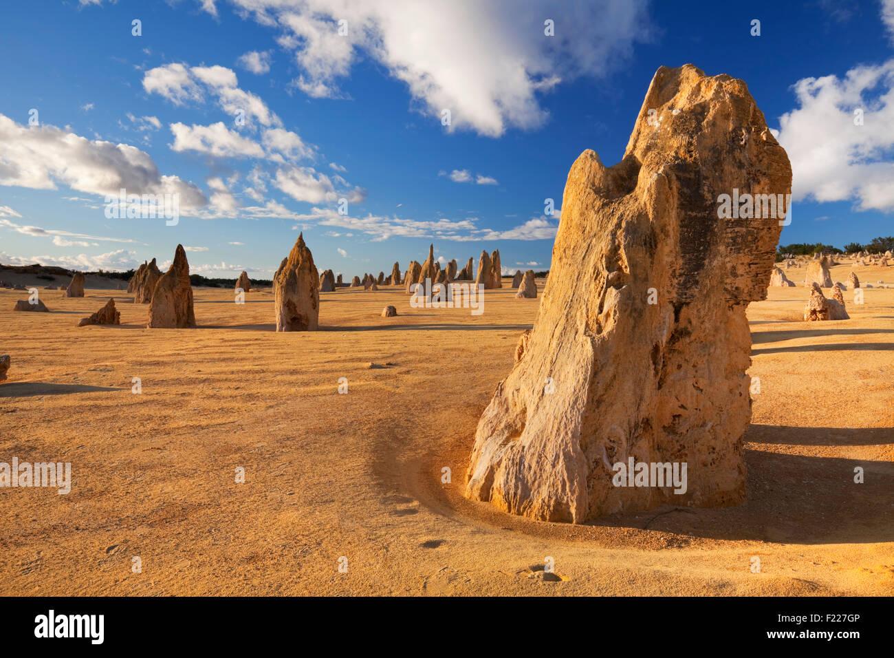 The Pinnacles Desert in the Nambung National Park, Western Australia. - Stock Image