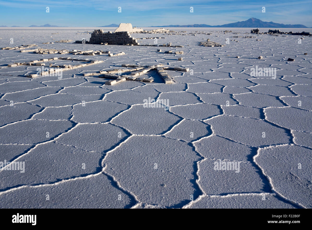 Salt hexagons. Salar de Uyuni. Bolivia - Stock Image