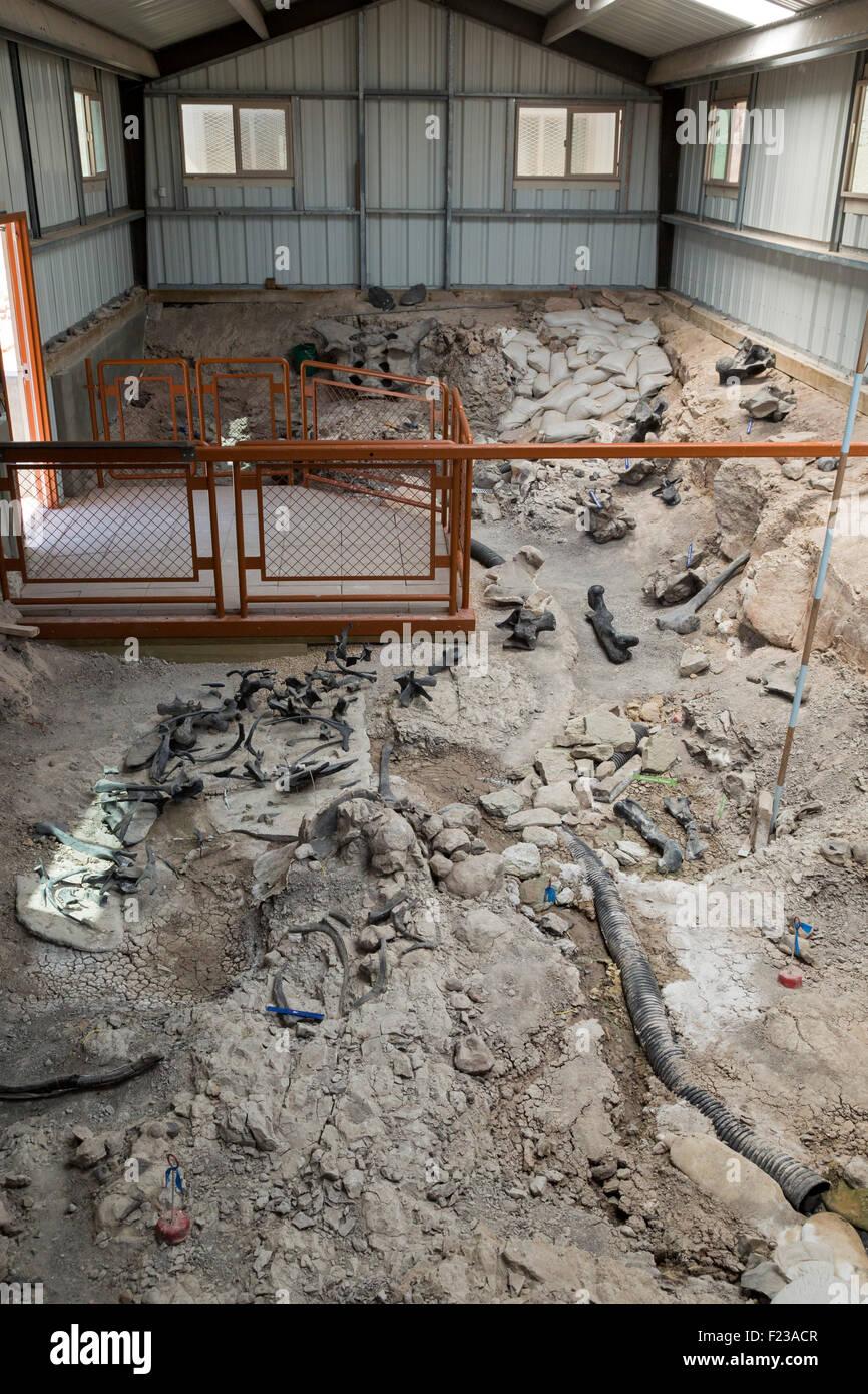 Cleveland, Utah - The Cleveland-Lloyd Dinosaur Quarry. More than 12,000 Jurassic-era dinosaur bones have been found - Stock Image