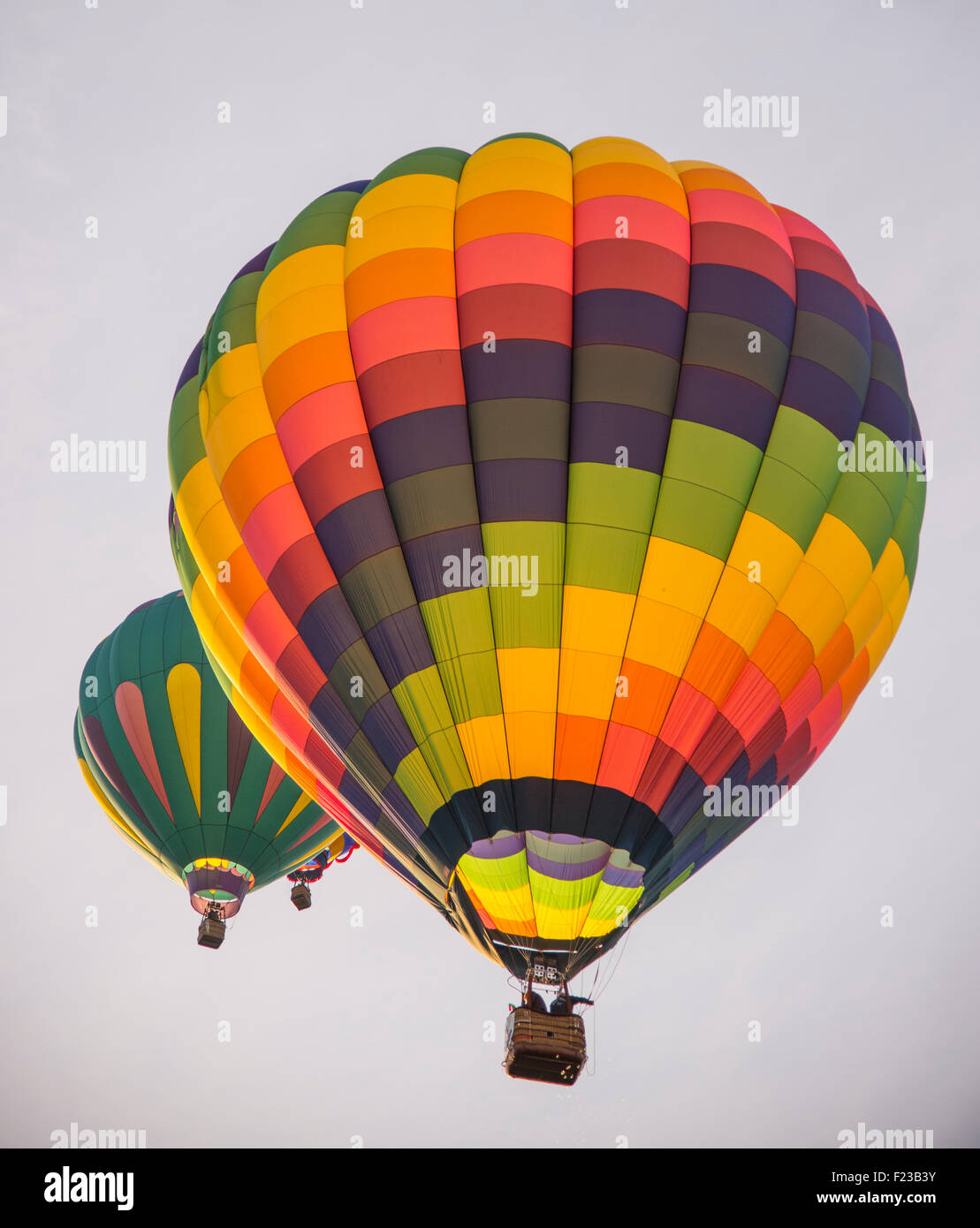 Hot Air Balloons, Spirit of Boise Balloon Classic, Ann Morrison Park, Boise, Idaho, USA Stock Photo