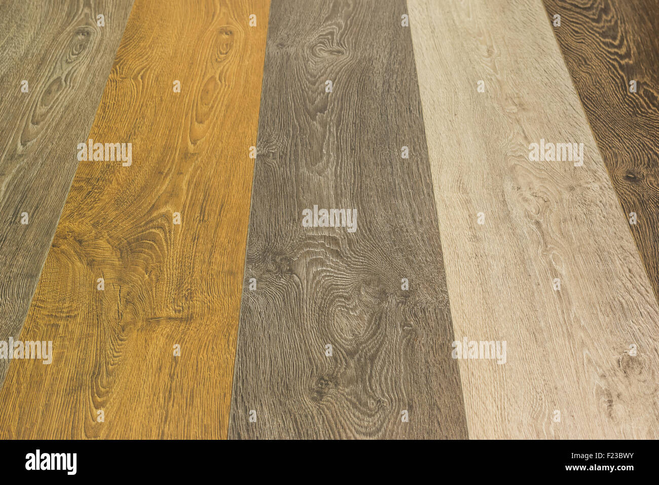 Different laminate - Stock Image