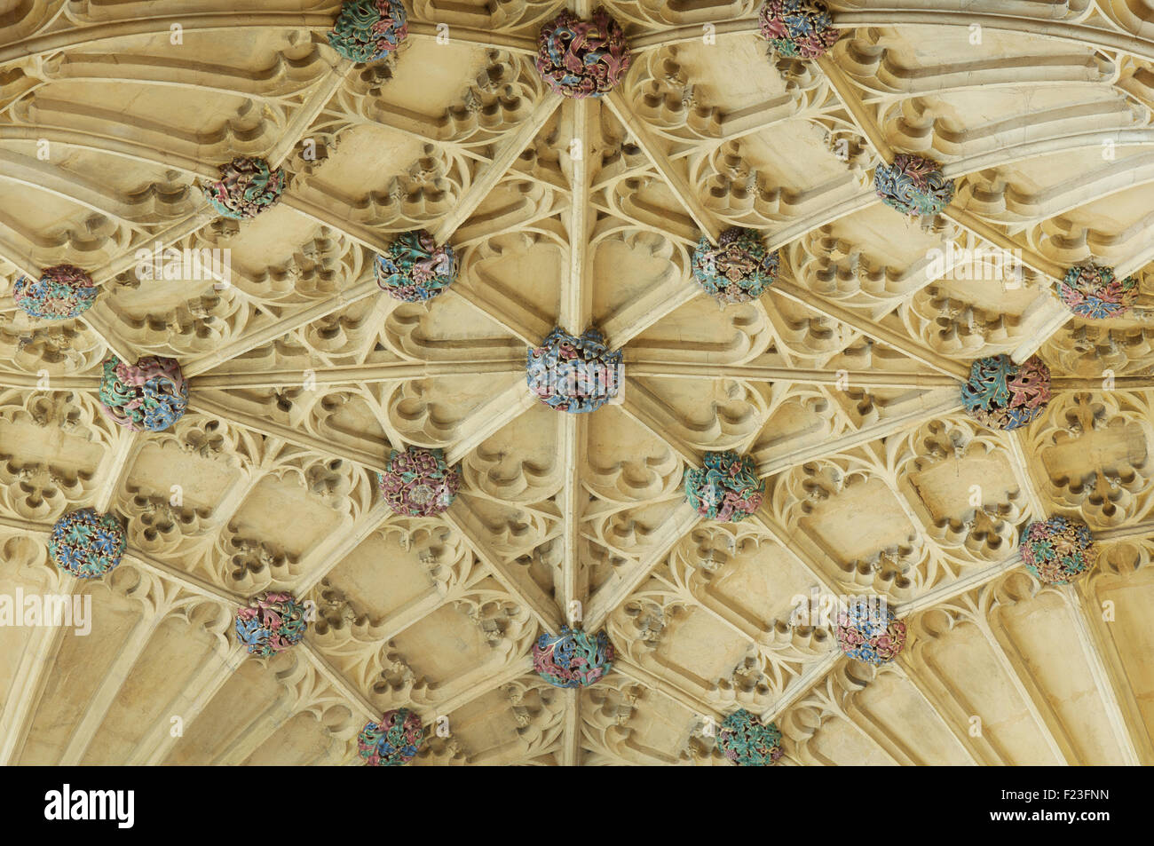 A detail of the colourful bosses of the ornate Gothic fan vaulted ceiling above the organ loft, Sherborne Abbey. - Stock Image