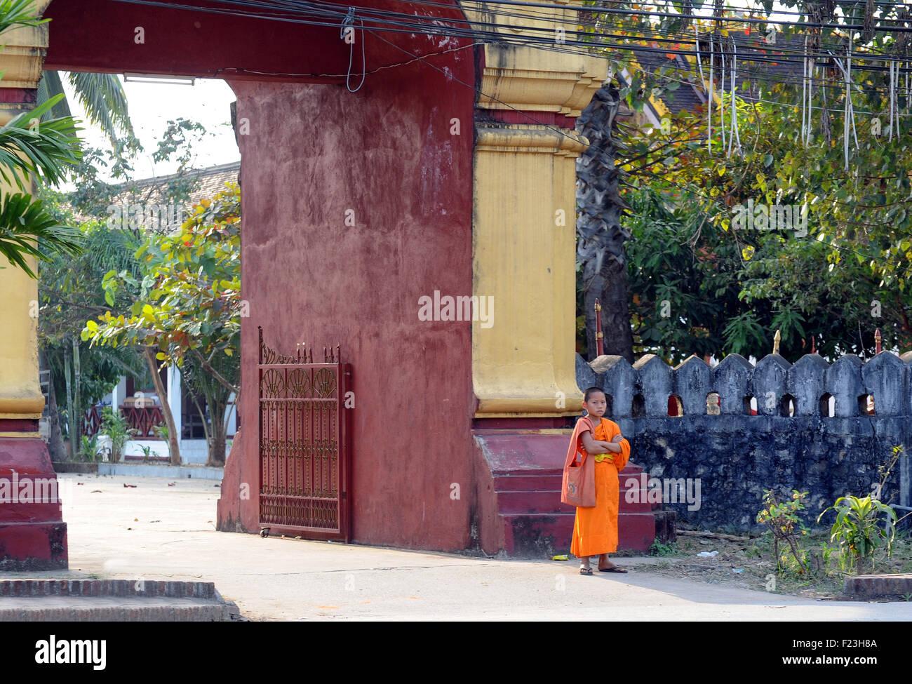 Lao novice monk in saffron robes Luang Prabang, Laos - Stock Image