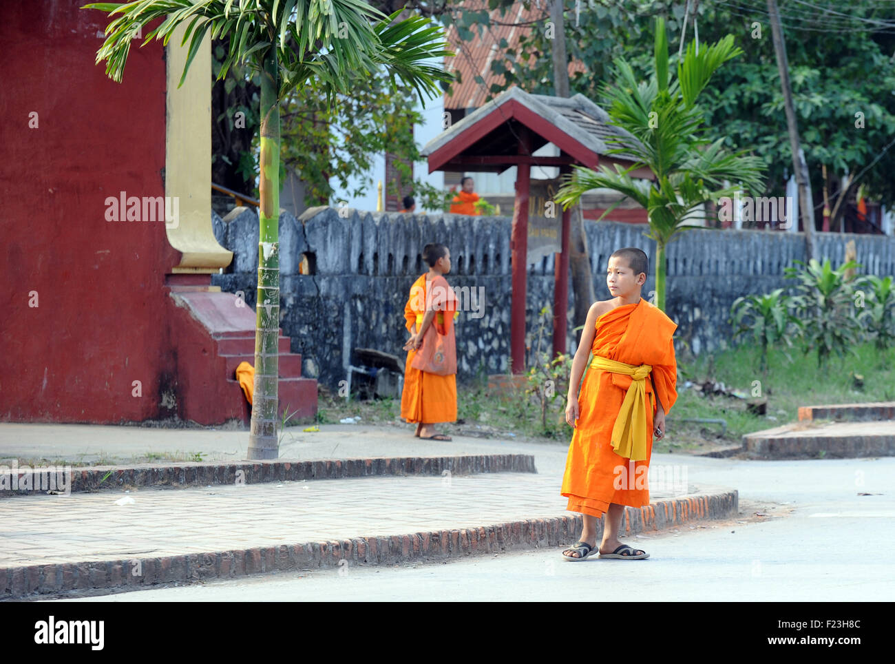 Lao novice monks in saffron robes Luang Prabang, Laos - Stock Image