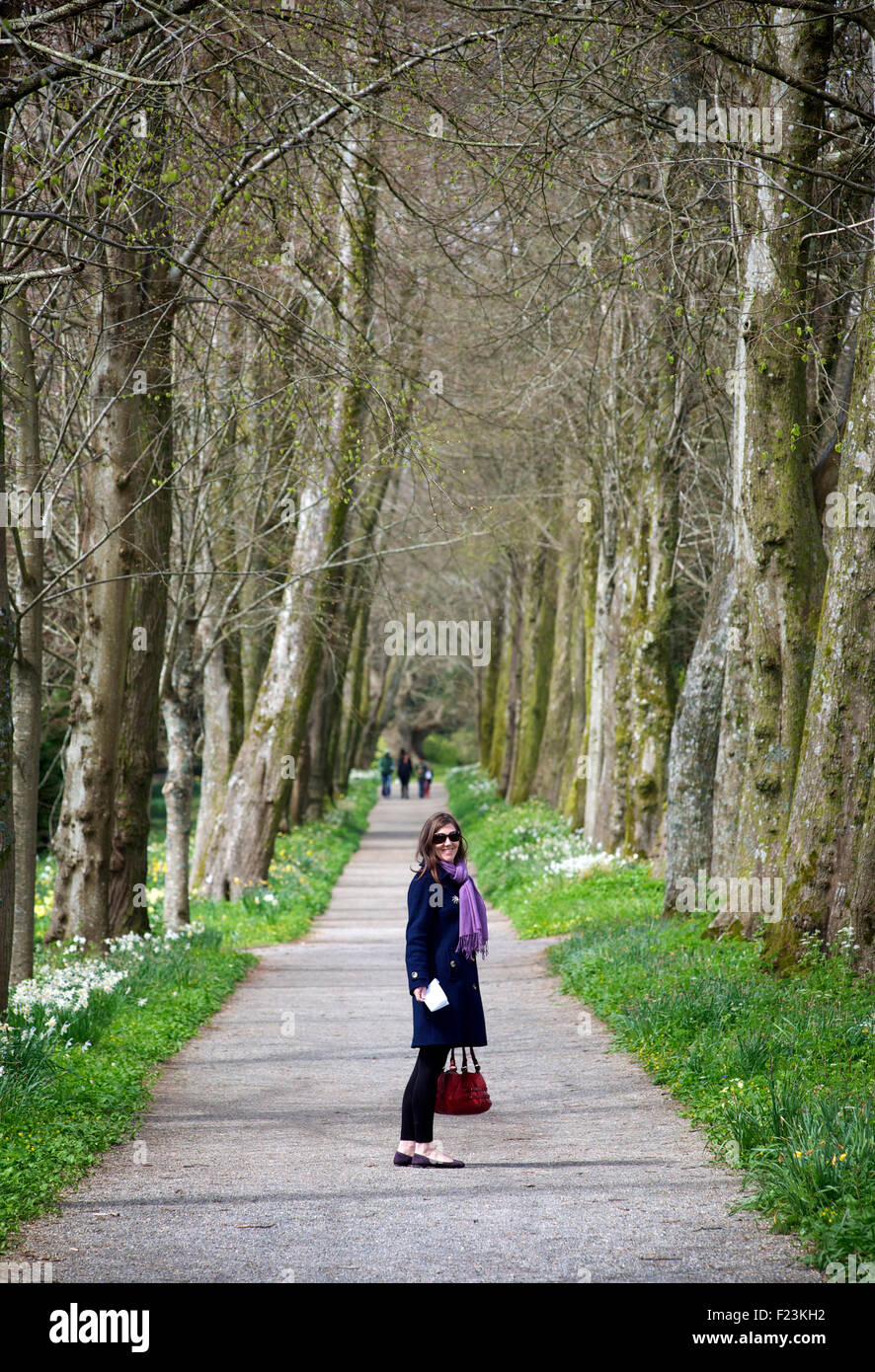 Woman standing on a path flanked with tall trees and smiling. Devon, England - Stock Image