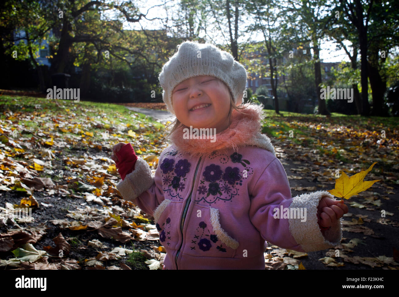 Toddler with a fallen leaf. St Ann's Well Gardens, Hove. brighton & Hove. England MODEL RELEASED - Stock Image