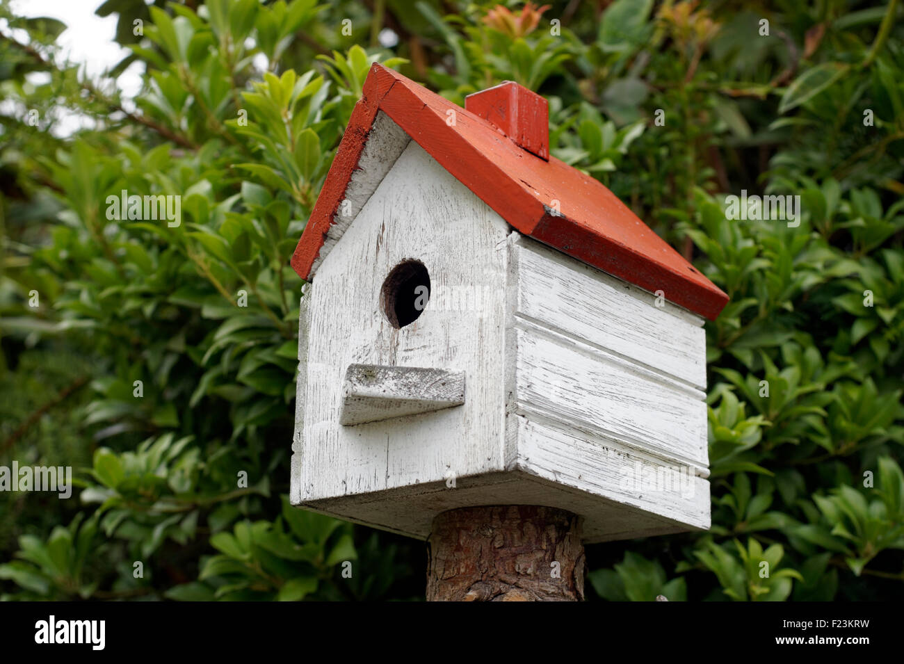 Close Up Of A Homemade Red And White Painted Wooden Birdhouse Stock