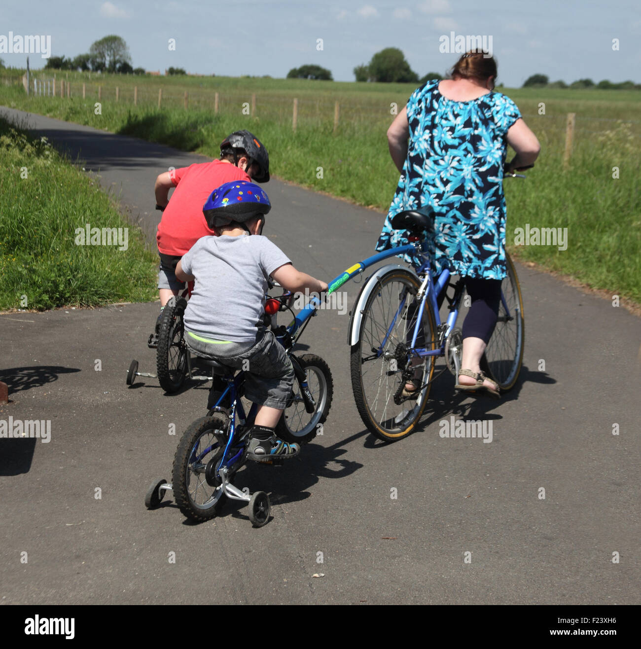 Mother and children riding bikes on cycle path in Norfolk - Stock Image