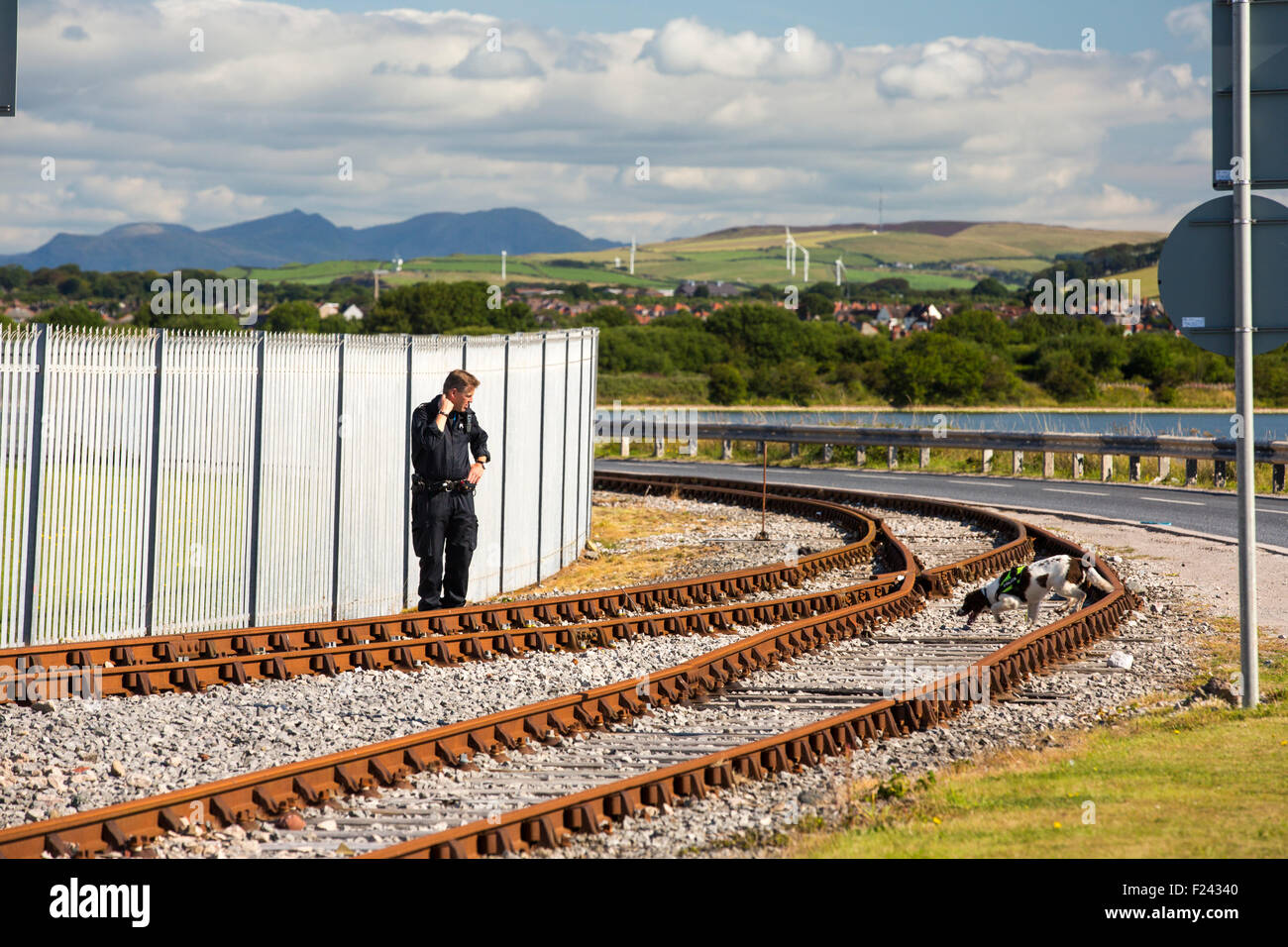 A police man with sniffer dog clears the railway tracks in preparation for moving the Artful, an Astute class hunter - Stock Image
