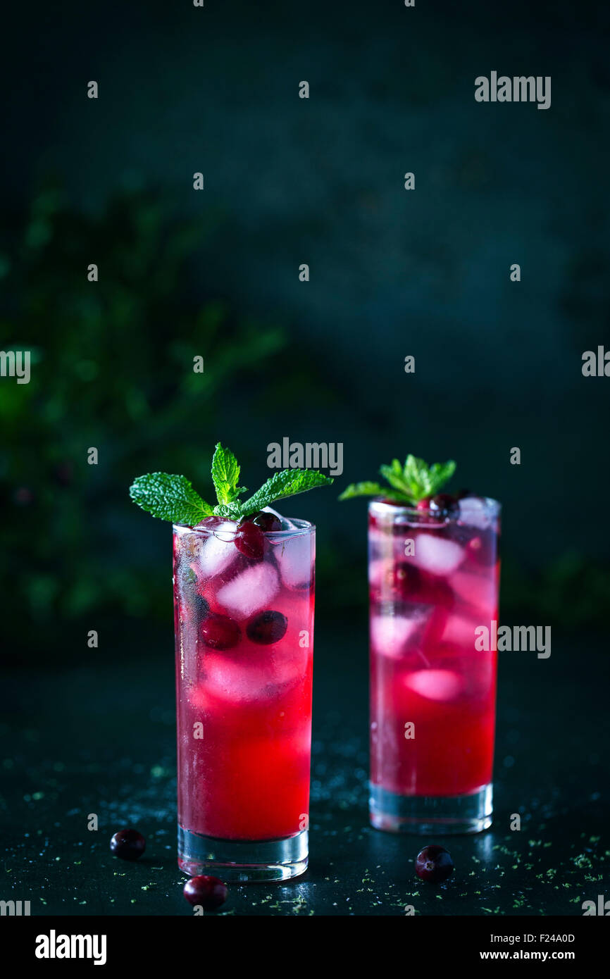 Two glasses of Cranberry and Mint Rum Punch with mint garnish and ice are displayed in a dark background. - Stock Image