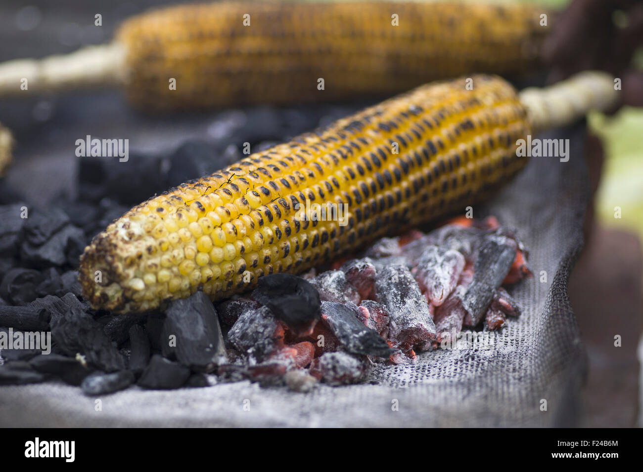 Indian Street food. Grilled Corn - Stock Image