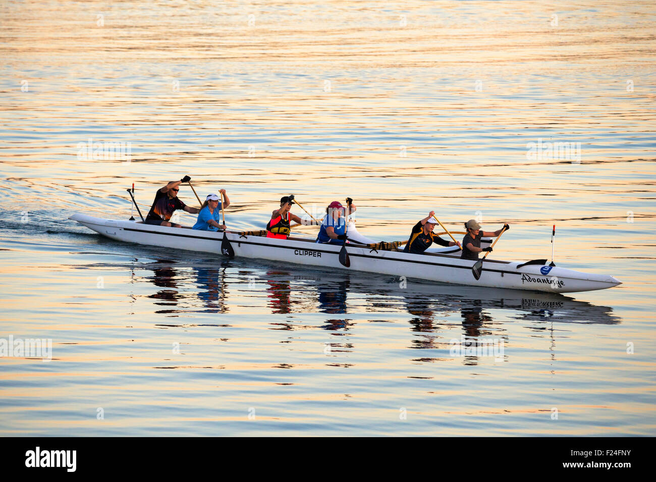 Rowing team in outrigger boat in Port of Victoria at dusk-Victoria, British Columbia, Canada. - Stock Image