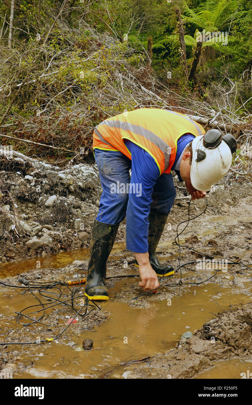 Man placing geophones in the ground for a seismic reflective survey on the West Coast of New Zealand - Stock Image