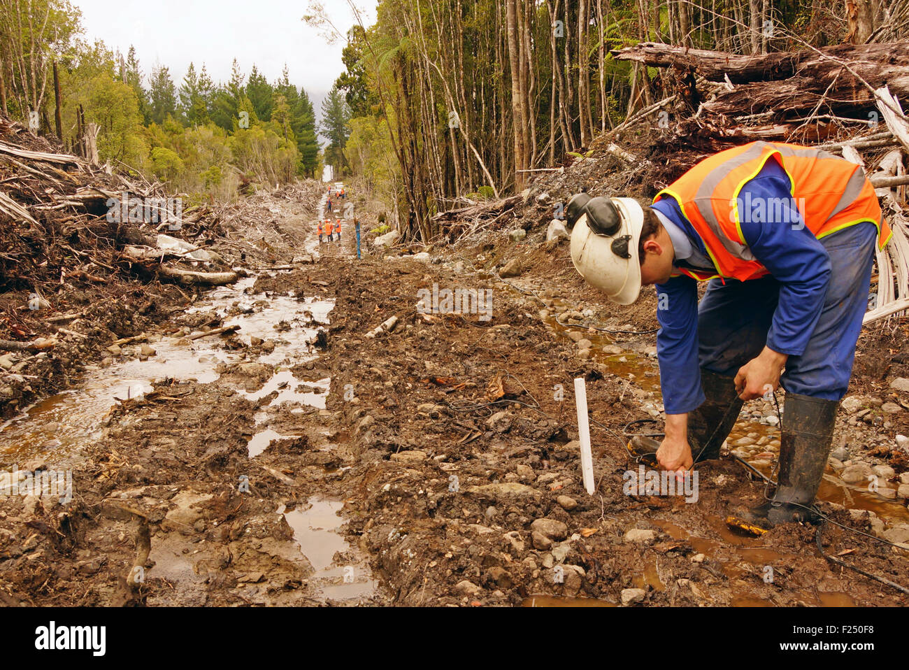Men placing geophones in the ground for a seismic reflective survey on the West Coast of New Zealand - Stock Image