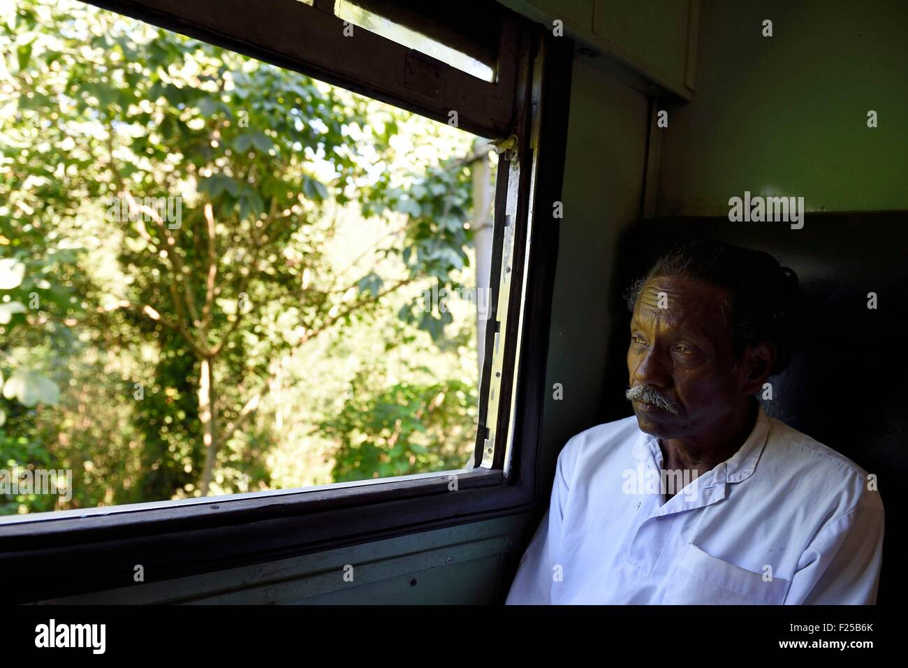 Sri Lanka, Uva Province, the popular scenic train ride through the tea growing hill country between Badulla and - Stock Image