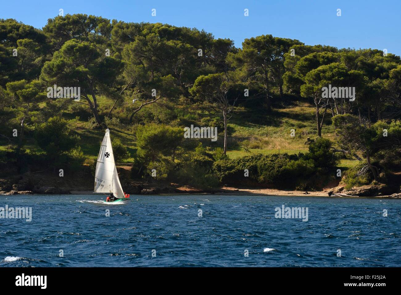 France, Var, Ile des Embiez, learning to sail on the cape of CanoubiΘ - Stock Image