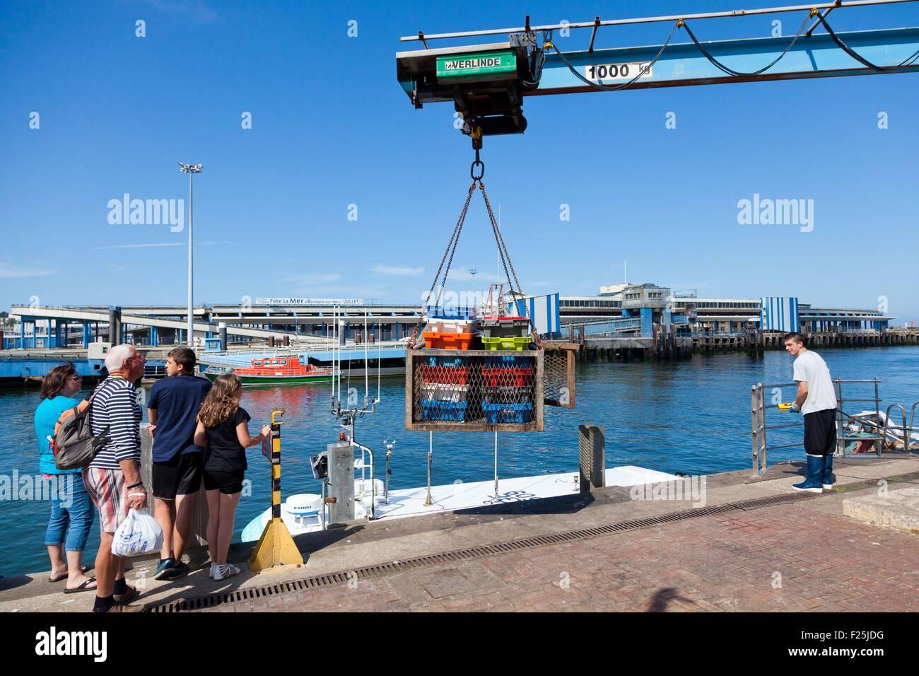 France, Pas de Calais, Boulogne sur mer, returned trawlers unloading boxes of fish fishing - Stock Image