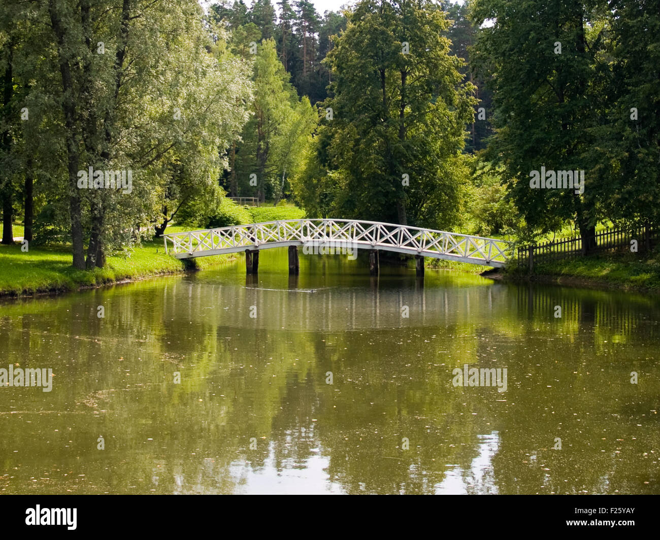 The humpbacked bridge in Mikhailovskoye where Pushkin was in exile - Stock Image