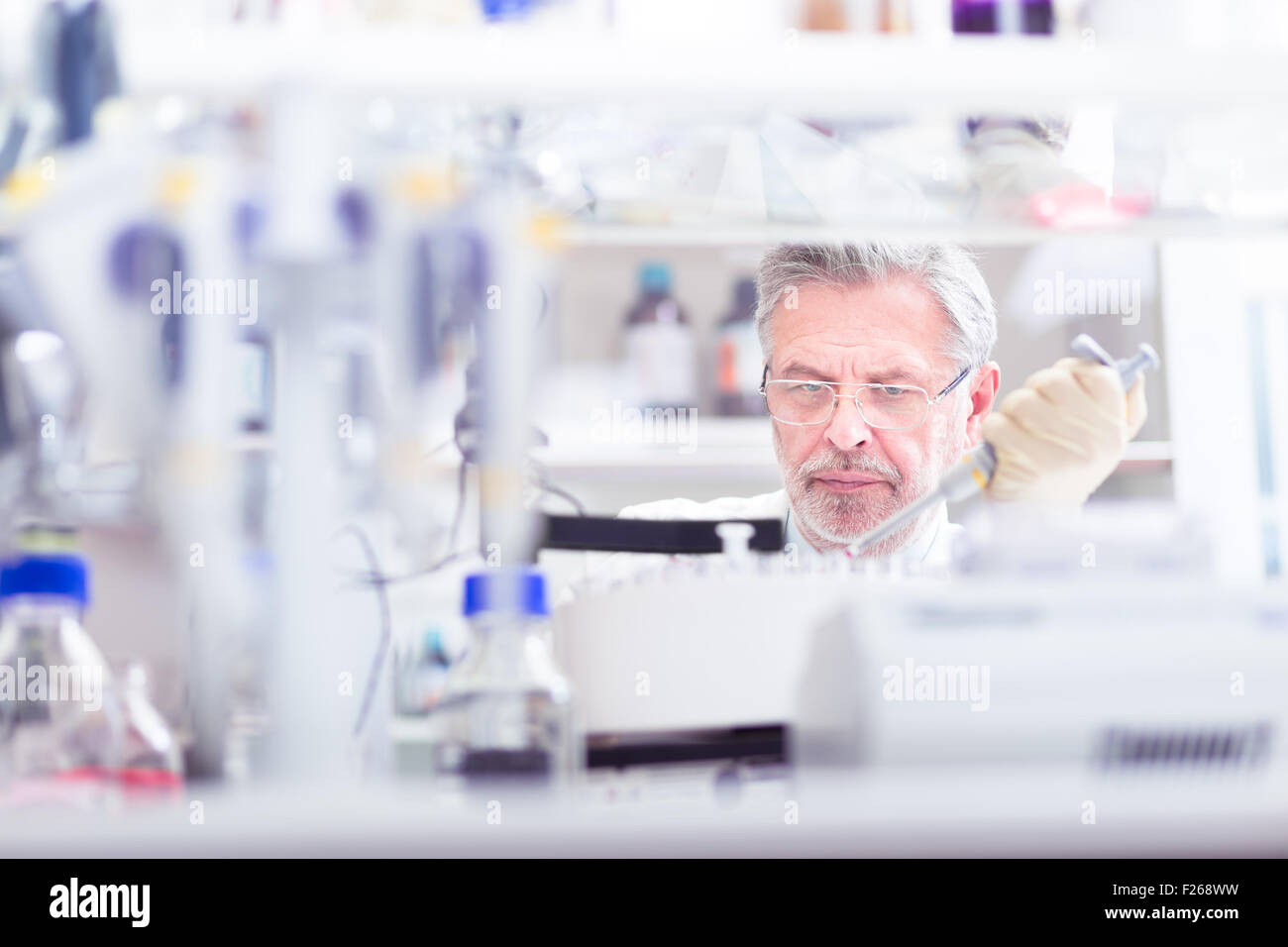 Life scientist researching in the laboratory. - Stock Image