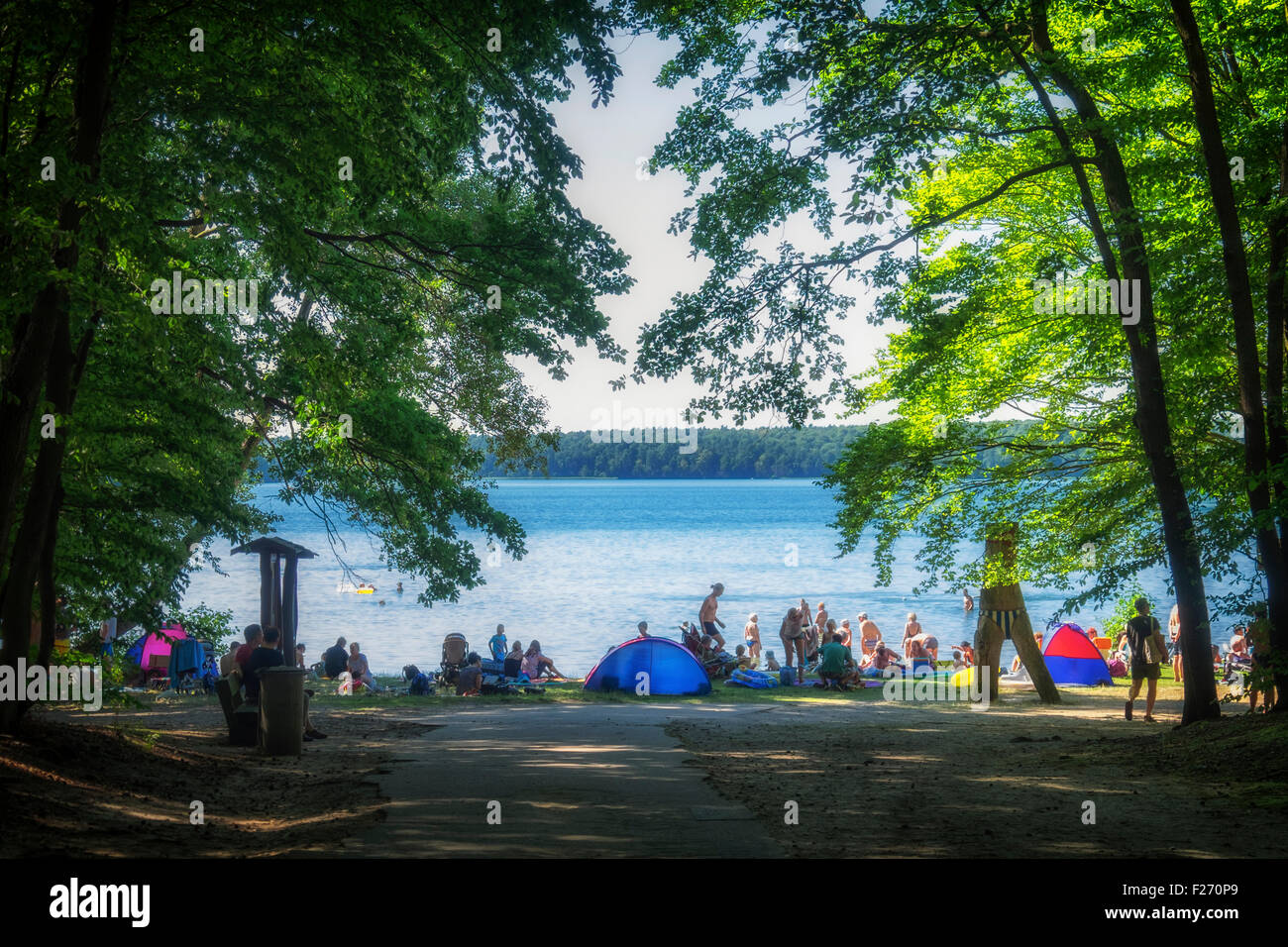 Blue lake, trees, swimmers, sunbathers and tents at Großer Stechlinsee, Lake Stechlin resort, Brandenburg, - Stock Image