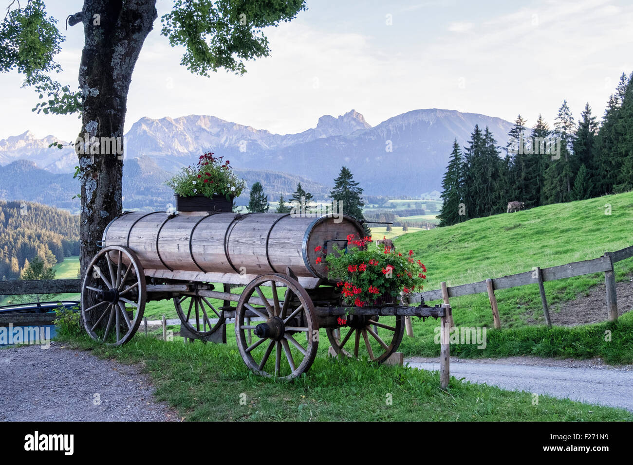 Bavarian Alps, Old Wagon farm land, trees, mountains and sky, Eastern Allgaü, Bavaria, Germany - Stock Image