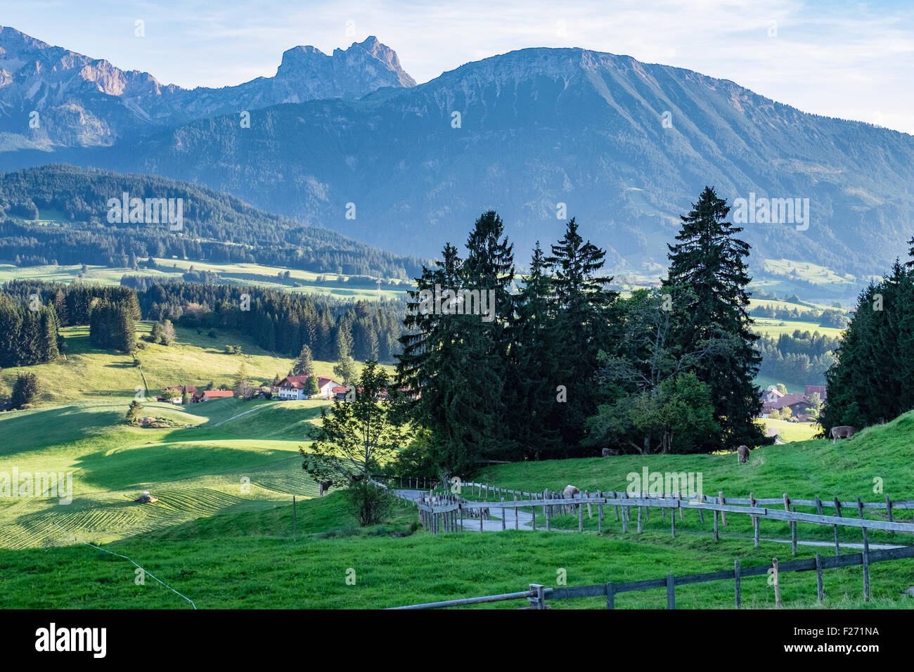 Bavarian Alps, landscape view of farm land, trees, mountains and sky, Eastern Allgaü, Bavaria, Germany - Stock Image