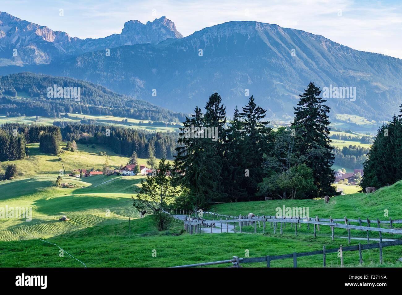 Bavarian Alps, landscape view of farm land, trees, mountains and sky, Eastern Allgaü, Bavaria, Germany - Stock Image