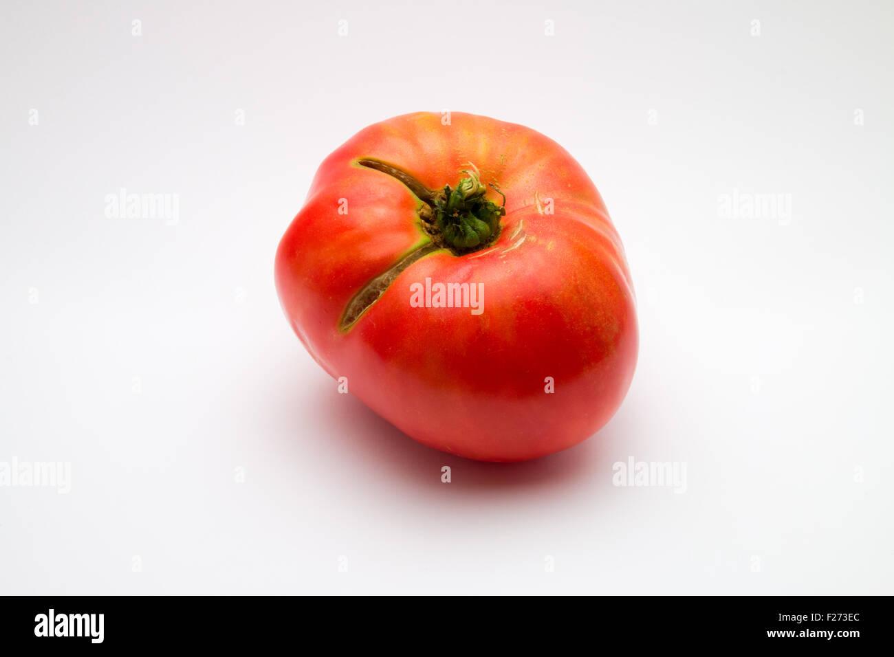 Large, imperfect brandywine tomato (Solanum lycopersicum) on white background - Stock Image