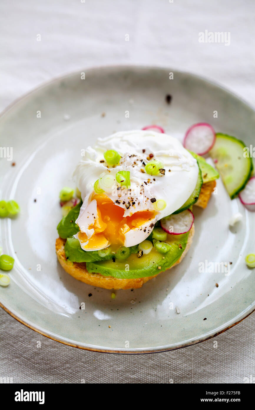 Toast with avocado and poached egg - Stock Image