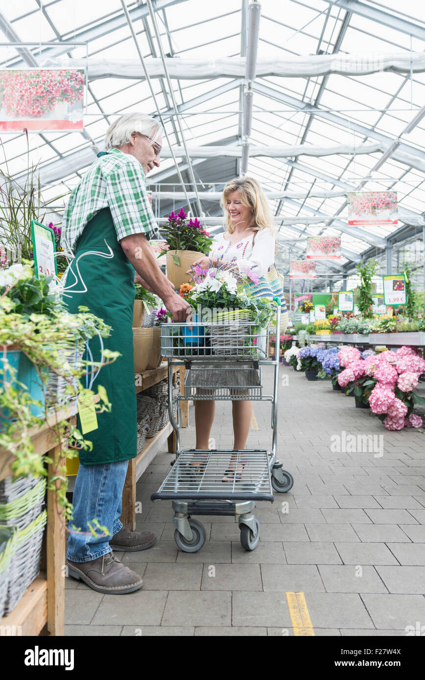 inside retail plant nursery in stock photos inside retail plant nursery in stock images alamy. Black Bedroom Furniture Sets. Home Design Ideas