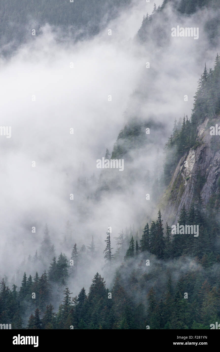Cloud shrouded mountain slope in Tongass National Forest, Alaska. - Stock Image