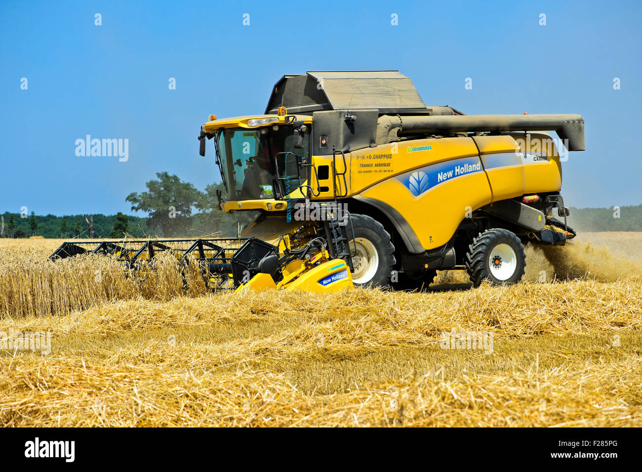 Combine Harvester New Holland CX8080 harvesting winter wheat, Canton Geneva, Switzerland - Stock Image