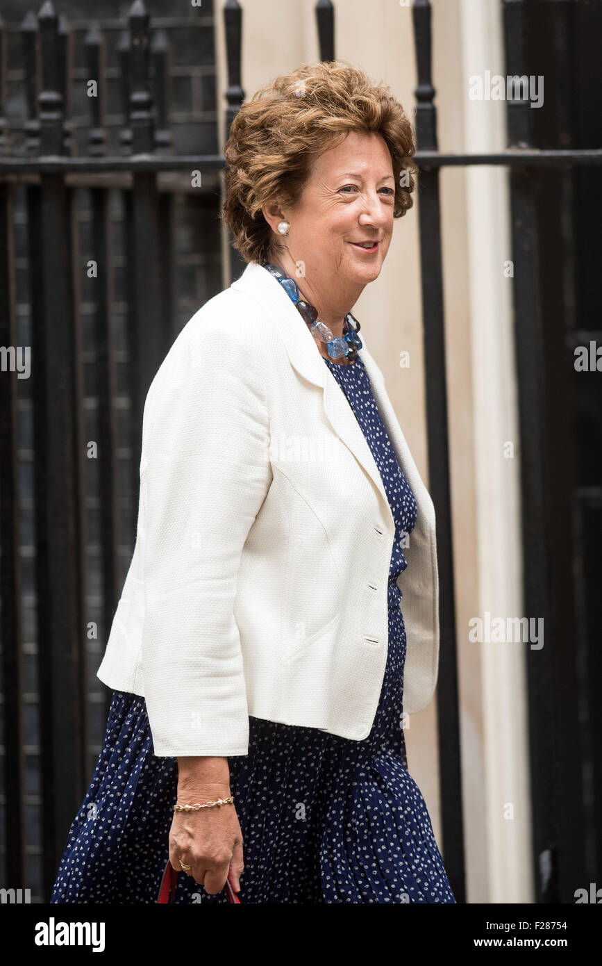 Joyce Anelay, Baroness Anelay of St Johns