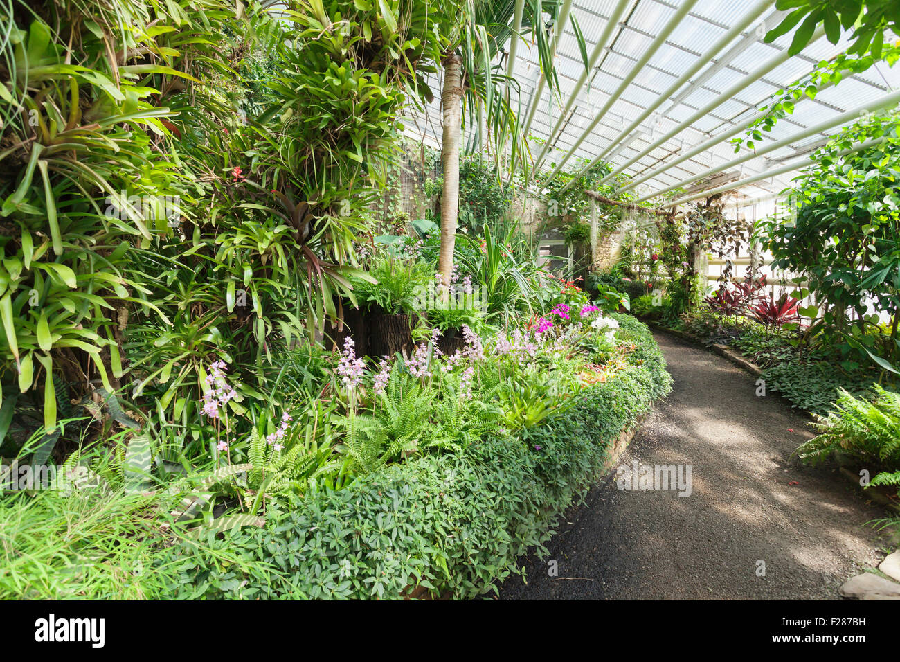 Greenhouse Botanical Garden Karlsruhe Baden Württemberg Germany