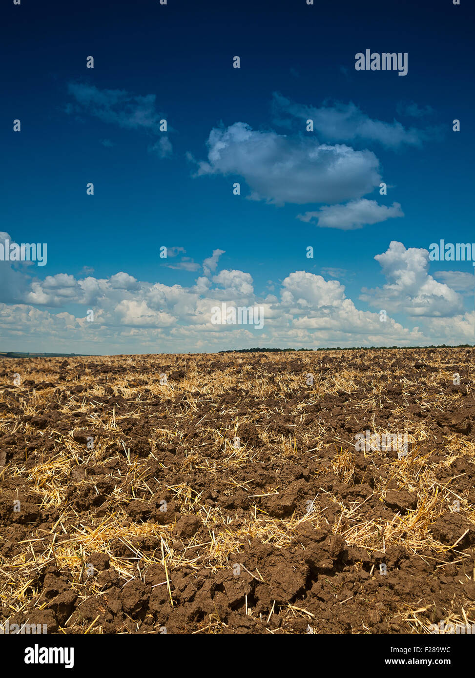 Plowed groung after wheat field with sky - Stock Image