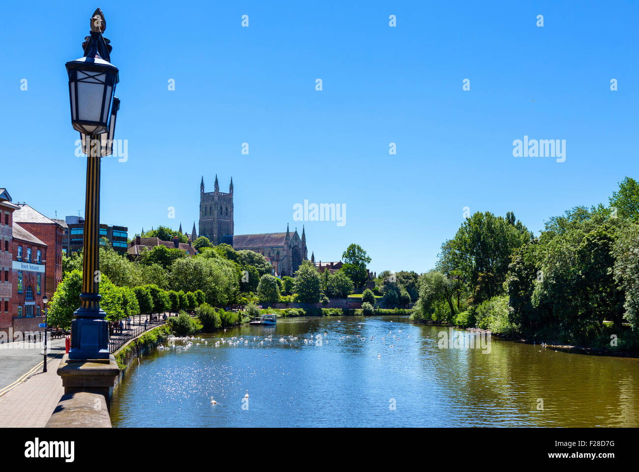 River Severn and Worcester Cathedral, Worcester, Worcestershire, England, UK - Stock Image